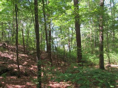 Residential Lots & Land For Sale: L16 B1 Gerard Circle