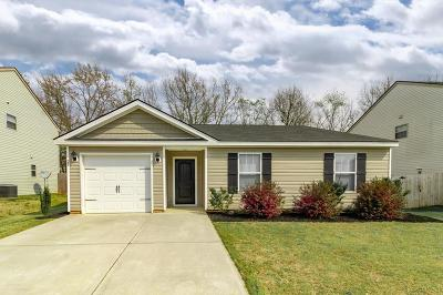 Aiken Single Family Home For Sale: 685 Fox Haven Drive