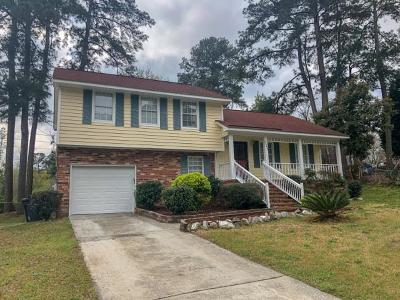 Hephzibah Single Family Home For Sale: 2846 Brentway Drive
