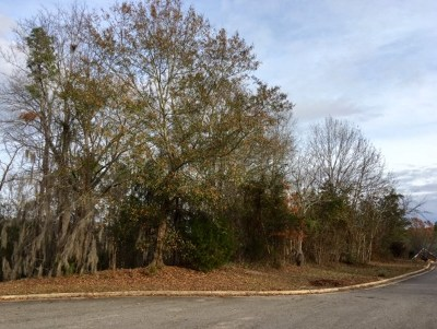 North Augusta Residential Lots & Land For Sale: 33 Moss Cove Lane