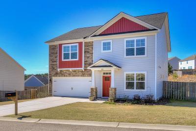 Aiken Single Family Home For Sale: 686 Telegraph Drive