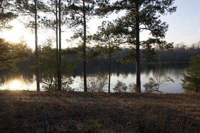 Edgefield County Residential Lots & Land For Sale: 58 Sable Lane
