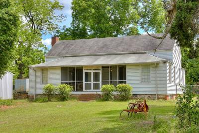 Richmond County Single Family Home For Sale: 2176 Hephzibah McBean Road