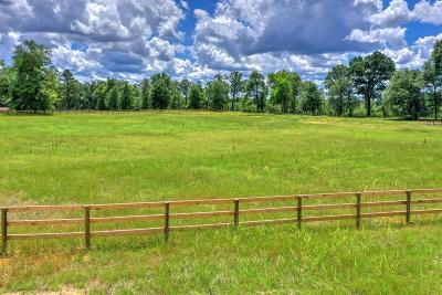Aiken Residential Lots & Land For Sale: 000 Lewis Lane