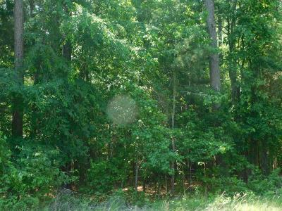 Lincolnton Residential Lots & Land For Sale: Chamberlain Ferry Road