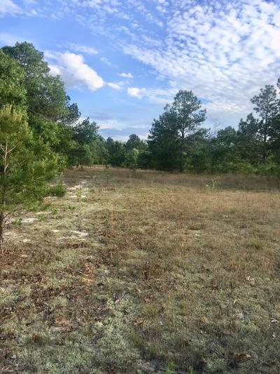 Edgefield County Residential Lots & Land For Sale: 300 Fish Farm Road