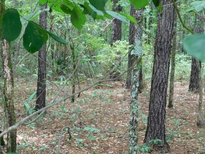 Lincolnton Residential Lots & Land For Sale: Lighthouse Pointe