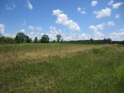 Thomson Residential Lots & Land For Sale: Wrightsboro Road