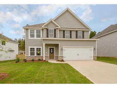 Grovetown Single Family Home For Sale: 810 Chesham Avenue