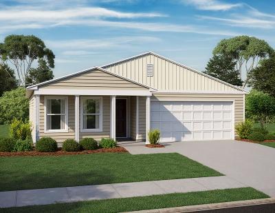 Beech Island Single Family Home For Sale: 5226 Old Magnolia Lane