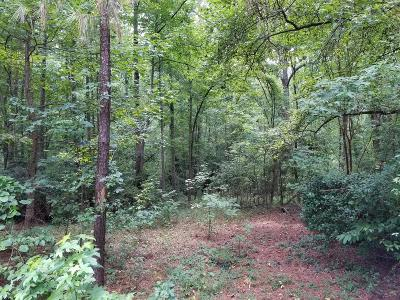 Grovetown Residential Lots & Land For Sale: 215 Vfw Road