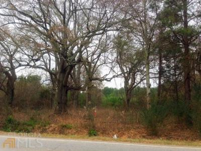 Hampton Farm For Sale: 511 Ga Highway 3 Old Dixie Hwy