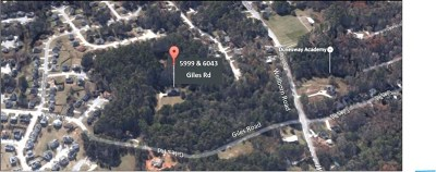 Lithonia Farm For Sale: 5999 Giles Rd