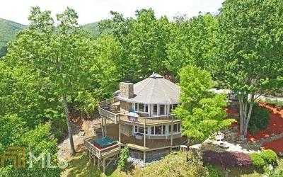 Hiawassee Single Family Home For Sale: 1060 Fox Fire Ln