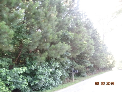 Hampton Residential Lots & Land For Sale: Turner Rd