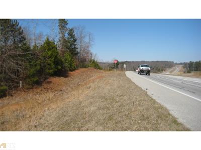 Commercial For Sale: Highway 441