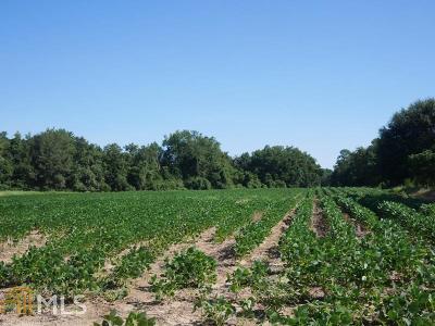 Statesboro Farm For Sale: Clito Rd