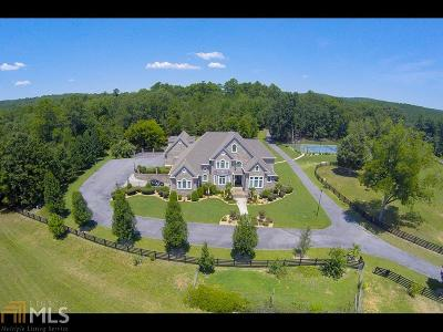 Floyd County, Polk County Single Family Home For Sale: 687 Ward Mountain Rd