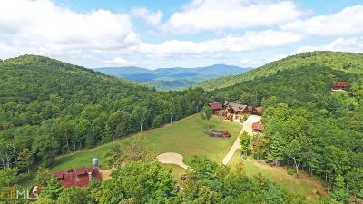 Helen Single Family Home For Sale: 3051 Rice Cabin Overlook Rd