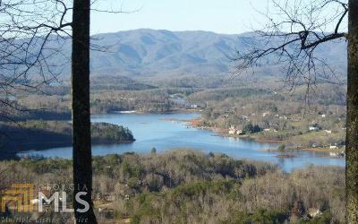 Hiawassee Single Family Home For Sale: 1816 Ivy Mountain Rd