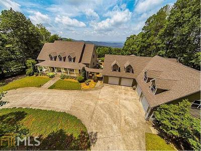 Fannin County, Gilmer County Single Family Home For Sale: 5962 Burnt Mountain Rd