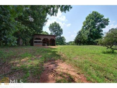 Clermont Single Family Home For Sale: 6655 Stringer Rd