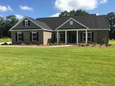 Brooklet Single Family Home For Sale: 234 Sara Beth Dr