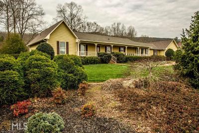 Floyd County, Polk County Single Family Home For Sale: 2877 Floyd Springs Rd