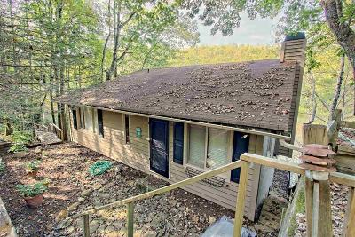 Rabun County Single Family Home For Sale: 1385 Tame Turkey Rd