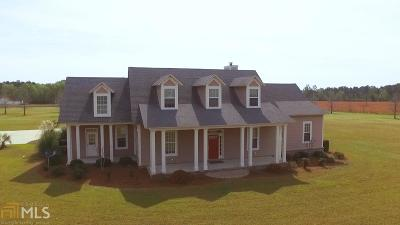 Statesboro Single Family Home For Sale: 228 Burkhalter Rd