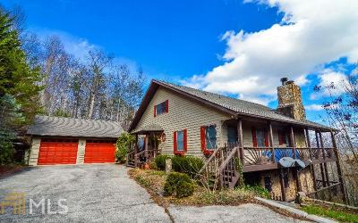 Towns County Single Family Home For Sale: 822 Mining Gap Trl
