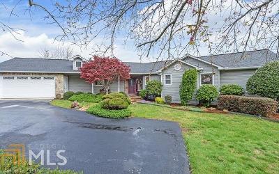 Hiawassee Single Family Home For Sale: 1130 Buckeye Ln