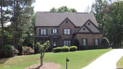 Stone Mountain Single Family Home For Sale: 2294 Ivey Springs Trl