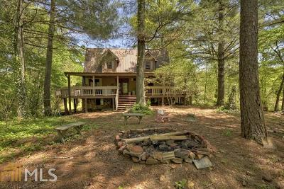 Fannin County, Gilmer County Single Family Home For Sale: 933 Cashes Valley Rd