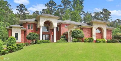 Peachtree City Single Family Home For Sale: 313 White Springs Ln