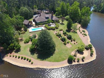 Lagrange Single Family Home For Sale: 1024 Peninsula Dr