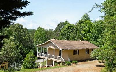 Hiawassee Single Family Home For Sale: 1419 Berrong Rd