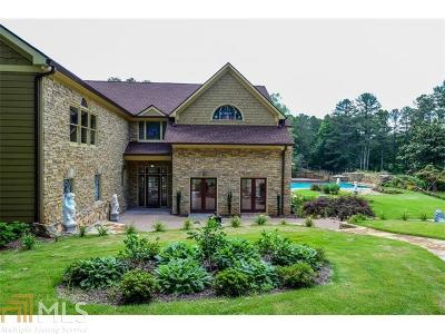 Roswell Single Family Home For Sale: 385 Pine Grove Rd