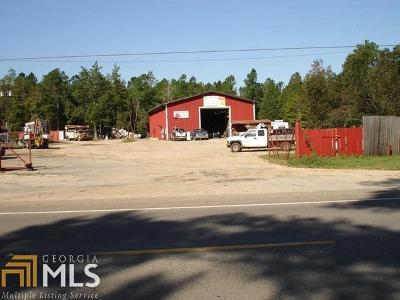Commercial For Sale: 2325 Burton Ferry Hwy