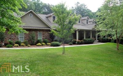 Blairsville Single Family Home For Sale: 170 Orchard Dr