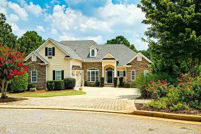McDonough Single Family Home For Sale: 156 Archstone Sq