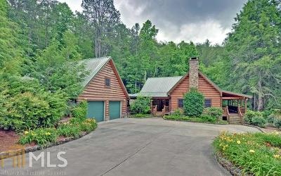 Blairsville Single Family Home For Sale: 99 Thornton Ln
