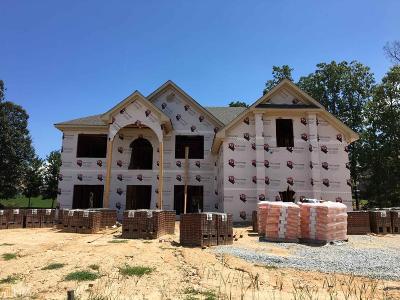 Ellenwood Single Family Home For Sale: 4372 River Vista Rd #104
