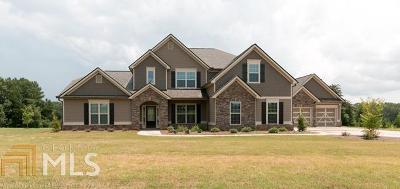 McDonough Single Family Home For Sale: 258 Enfield Ln #031