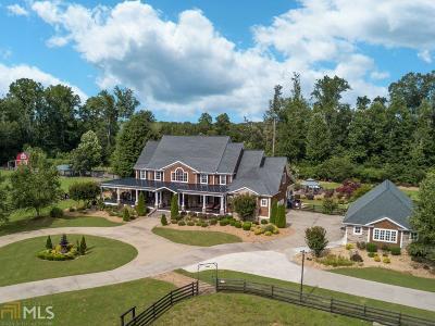 Floyd County, Polk County Single Family Home For Sale: 2856 Old Dalton Rd