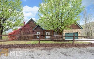 Hiawassee Single Family Home For Sale: 1430 Overlook Trl