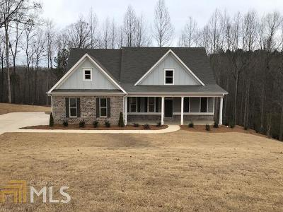 Rutledge Single Family Home For Sale: 131 Spring Creek Dr