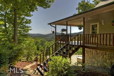 Single Family Home For Sale: 1132 Green Ridge Rd