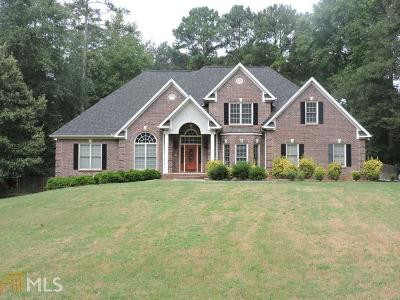 Clayton County Single Family Home For Sale: 8585 N Shore Dr