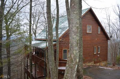 Blairsville Single Family Home For Sale: 523 Choestoe Ln
